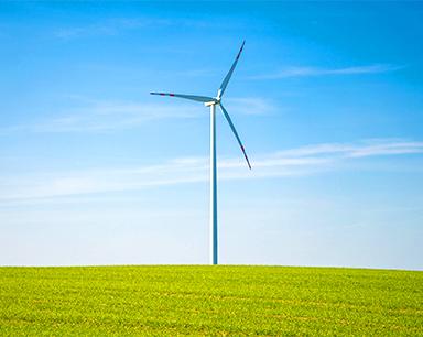 鸿尚新能源